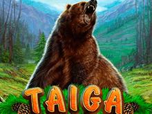Игровой автомат Тайга